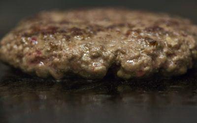 Carne per hamburger: quale scegliere e come prepararla.